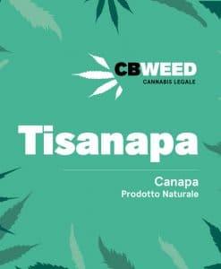 Tisanapa - Hemp infusion