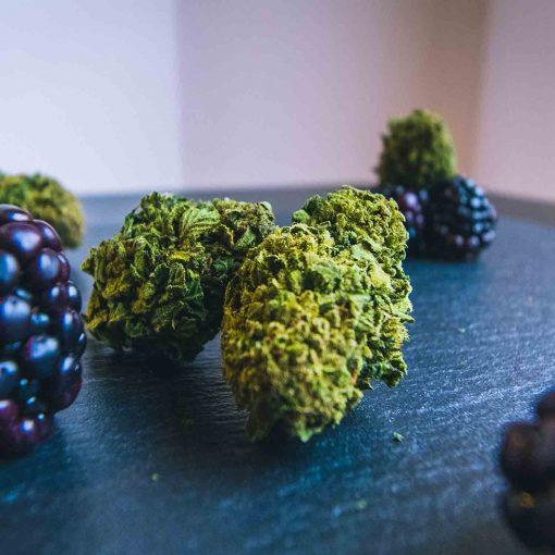 Cannabis Light Cbweed Blueberry CBD