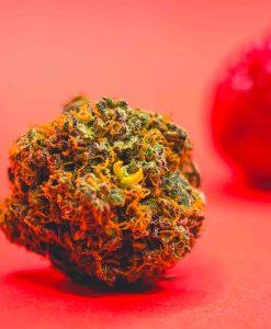 Cannabis Light Cbweed Strawberry