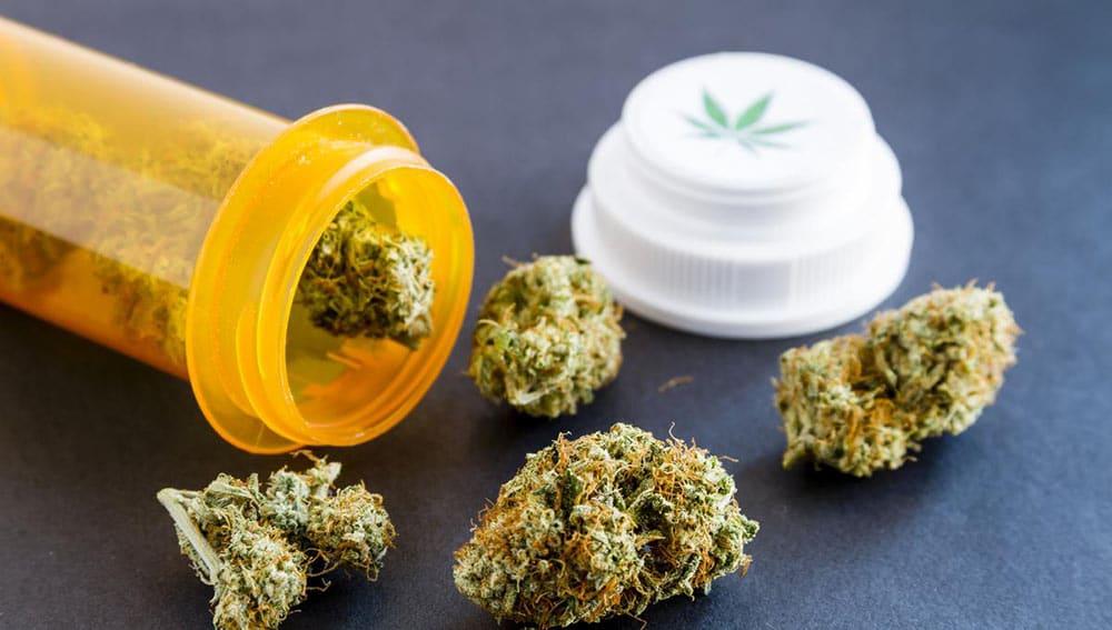 Verita Paradosso Cannabis Terapeutica Italia