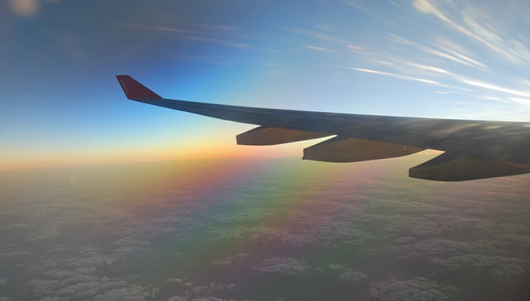 Viaggiare Aereo Cannabis Light Olio Cbd Legale Aeroporto