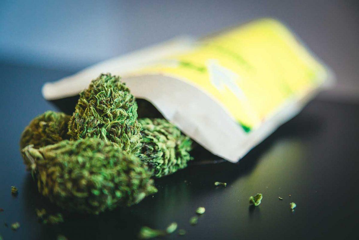 aprono-negozi-cannabis-light-costa-azzurra-francia