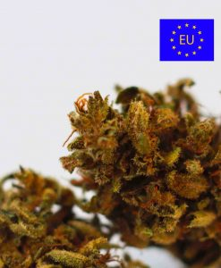 Cannabis Light Cbweed Blue Cheese CBD