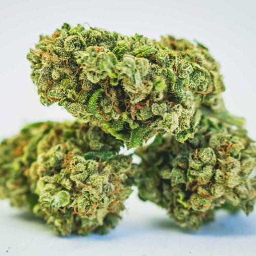 Cannabis Light Cbweed Orange Bud CBD - 5g