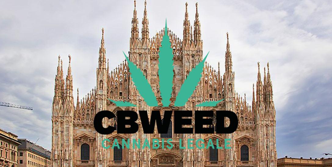 Comune Milano Regione Piemonte Cannabis Terapeutica