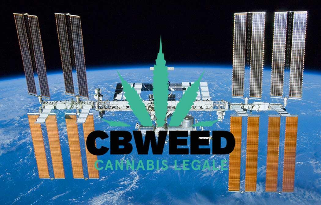 Cannabis Conquista Spazio Sperimentazioni ISS