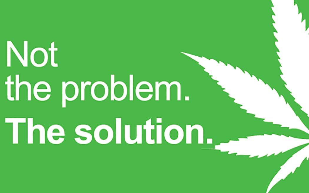 Cannabis Light Contro Spaccio Malavita