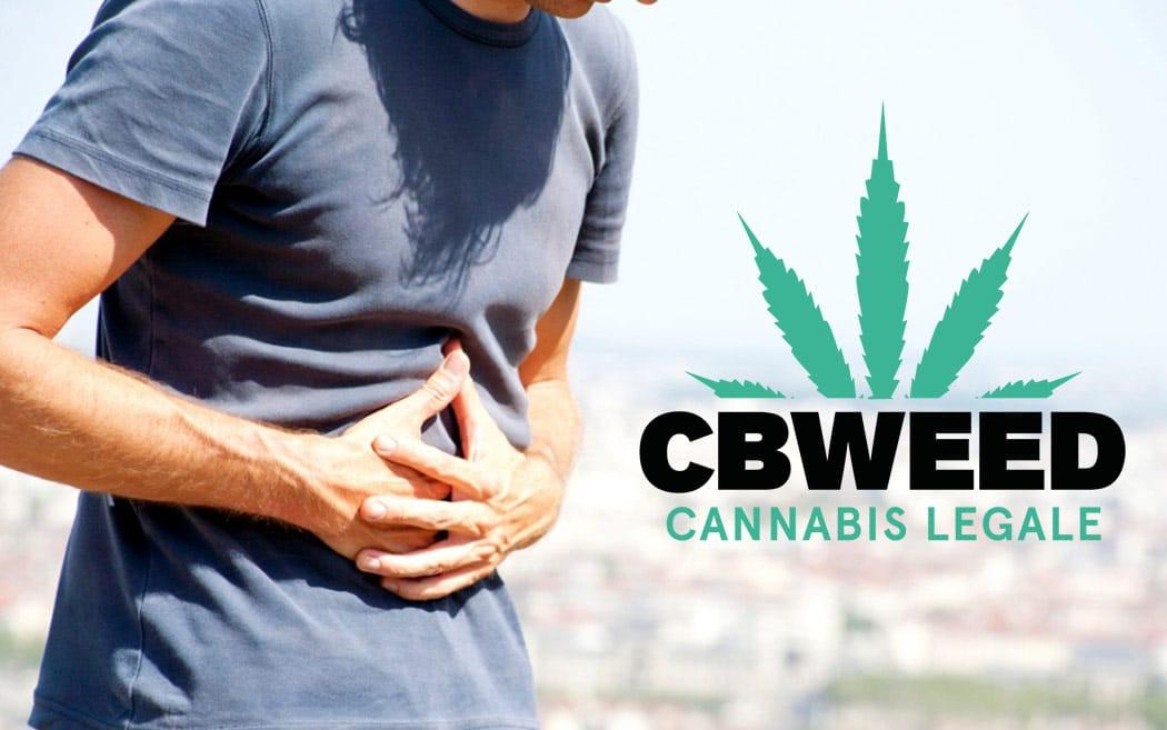 Benefici Cbd Cannabis Light Chi Soffre Celiachia Infiammazioni Intestinali
