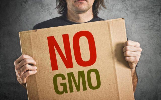 Monsanto Bayer Multinazionali Si Interessano Alla Cannabis