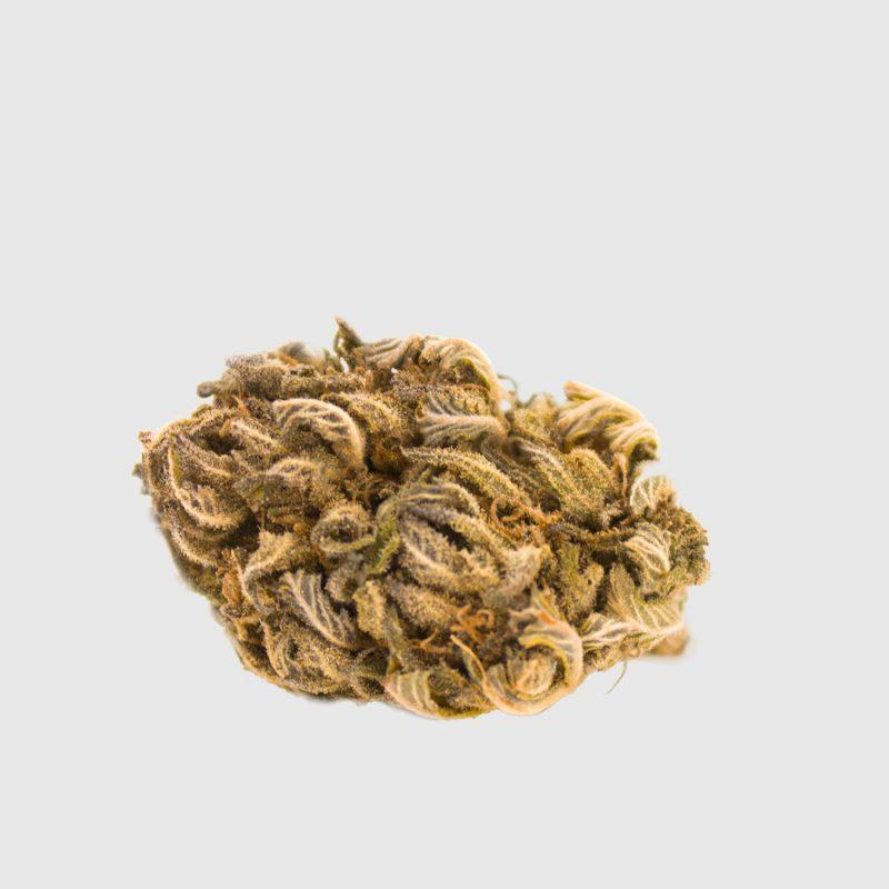 Cannabis Light GORILLA GLUE CBD – 1g EU