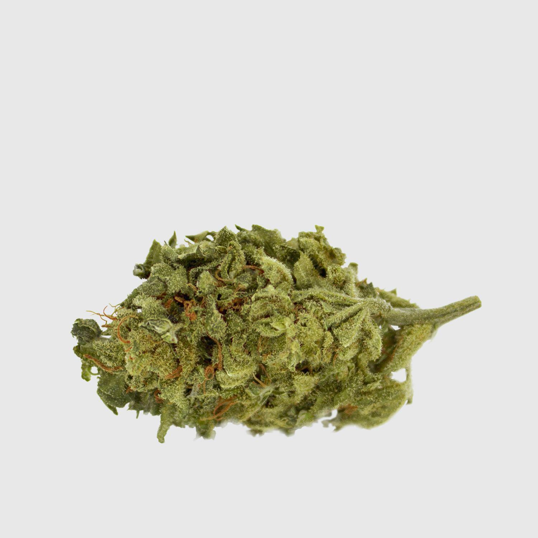 Cannabis Light Super Lemon Haze CBD