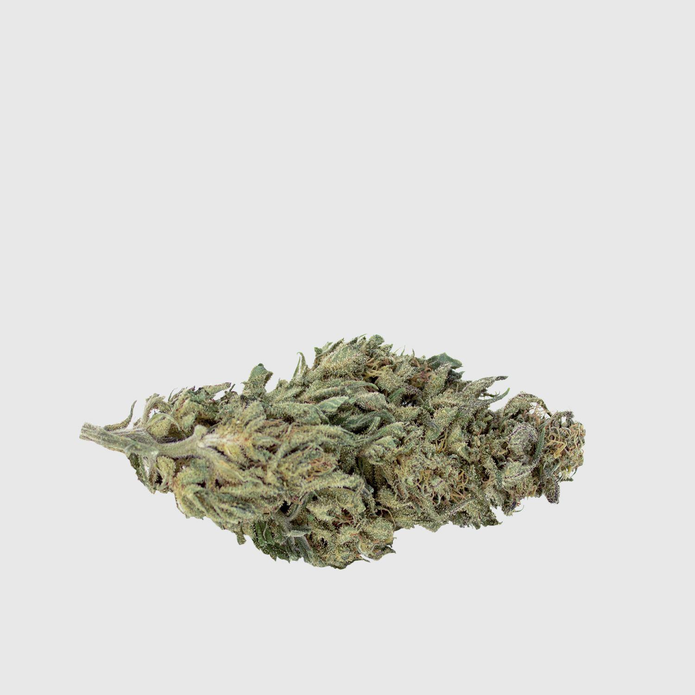 Cannabis Light White Widow CBD