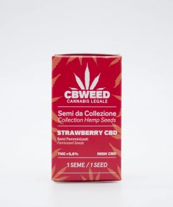 Semi femminizzati Strawberry CBD packaging