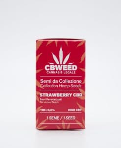 Semi femminizzati Strawberry CBD