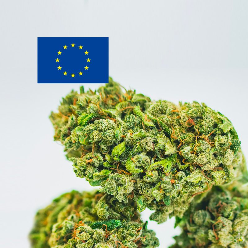 Cannabis Light Europa