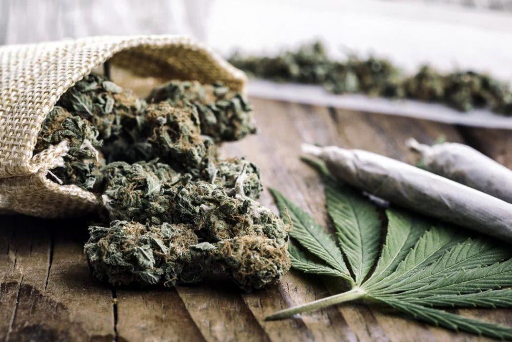 Sospesa licenza cinque negozianti cannabis light shop