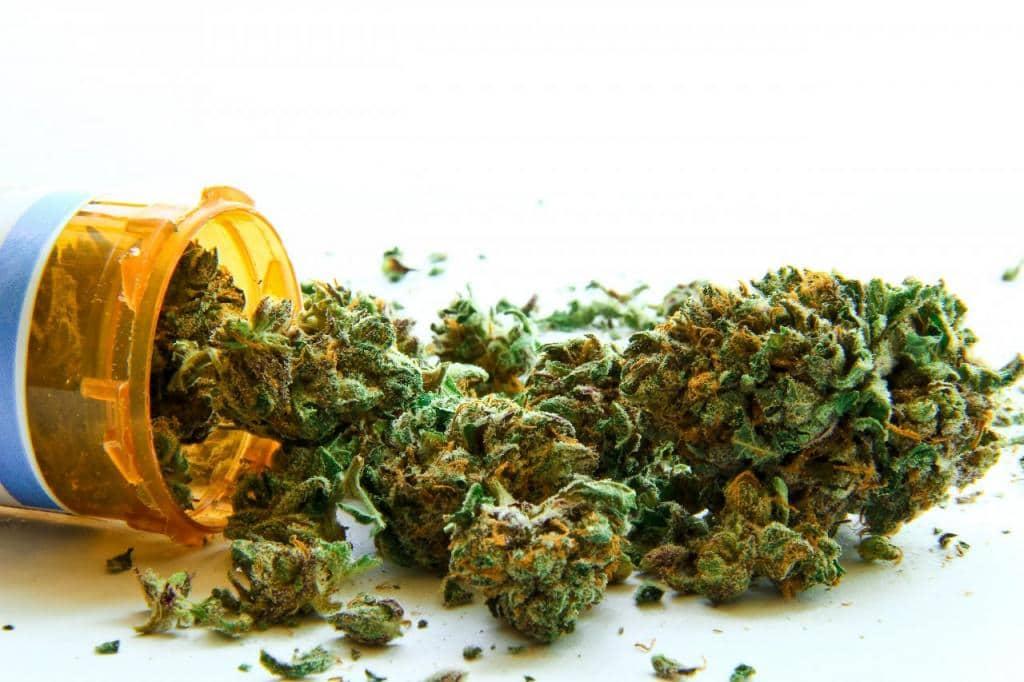 Irlanda cannabis medica testata 5 anni