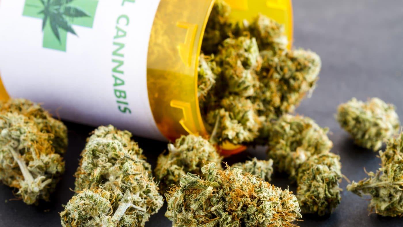 Cosa E Insufficienza Sistema Endocannabinoide