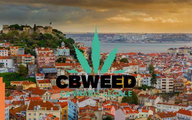 Migliori Mete Turistiche Ama Cannabis Canapa Viaggio