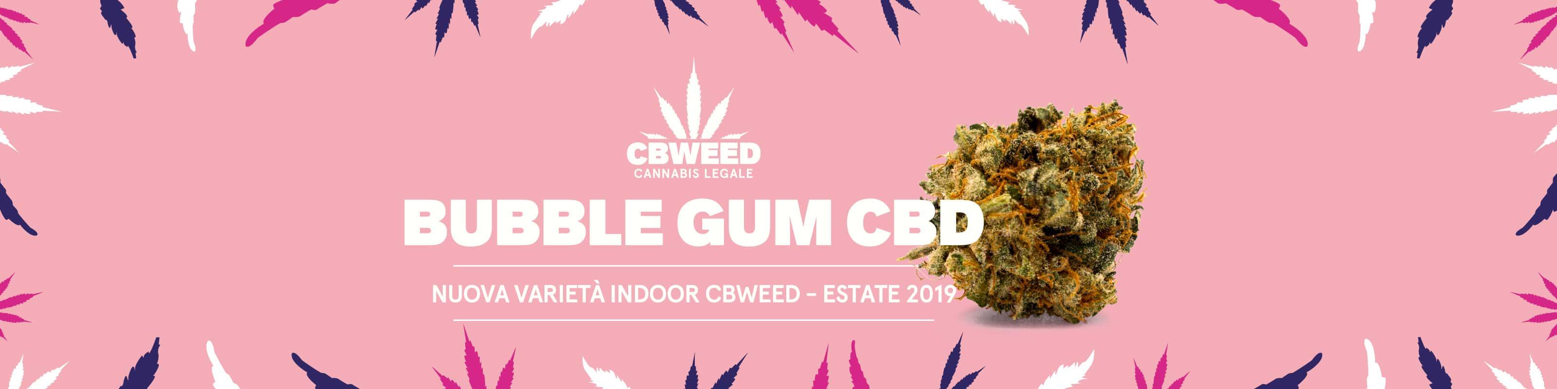 Bubblegum-banner-home