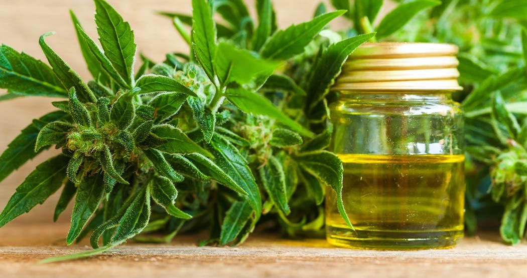 CBD Consumption Against Parkinson's Desease Help Manage Symptoms