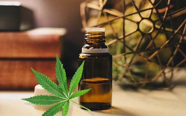 Tintura Cannabis Cosa Come Fara Casa Fai Da Te
