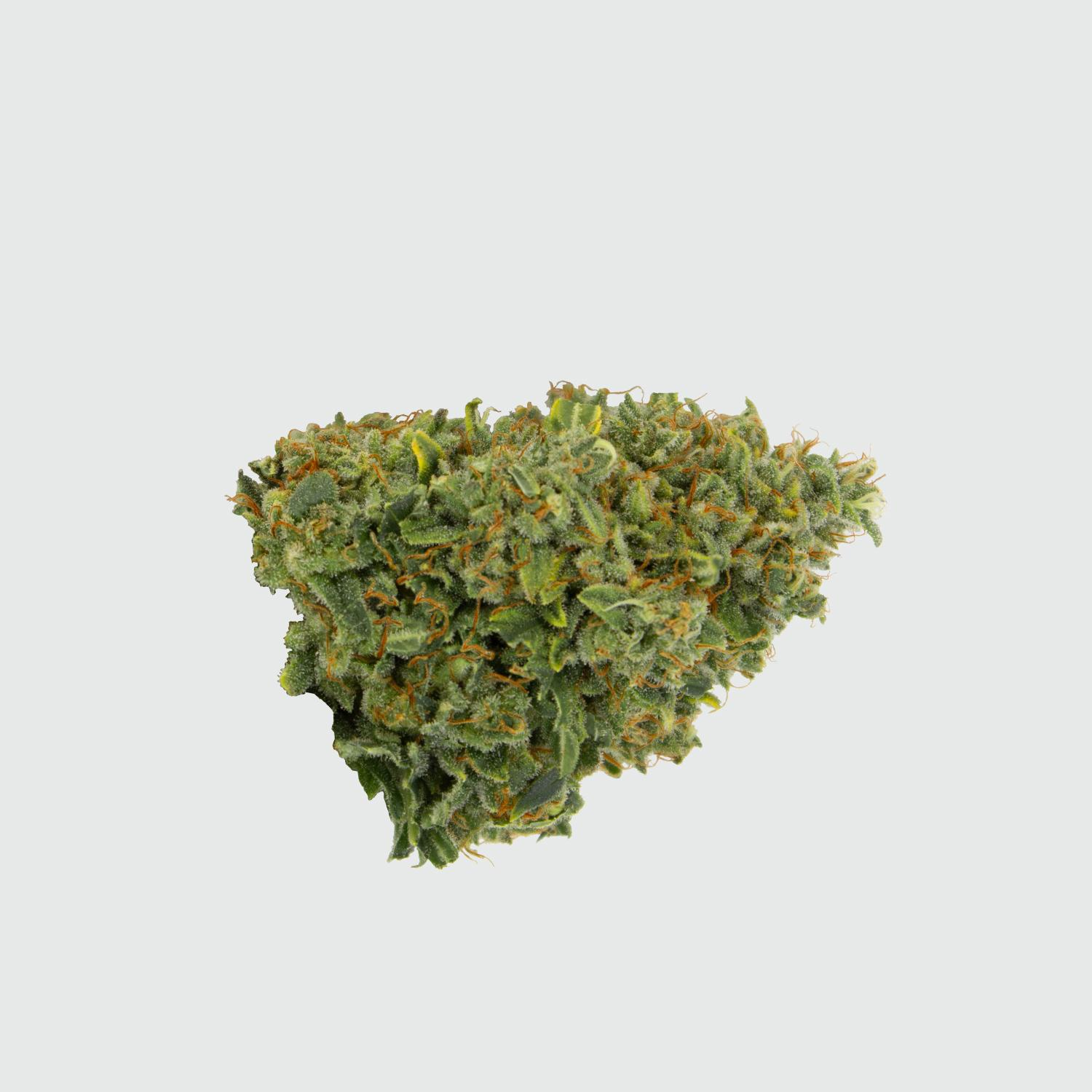 CBWEED-Green-House-Seed-Franco's-Lemon-Cheese-CBD