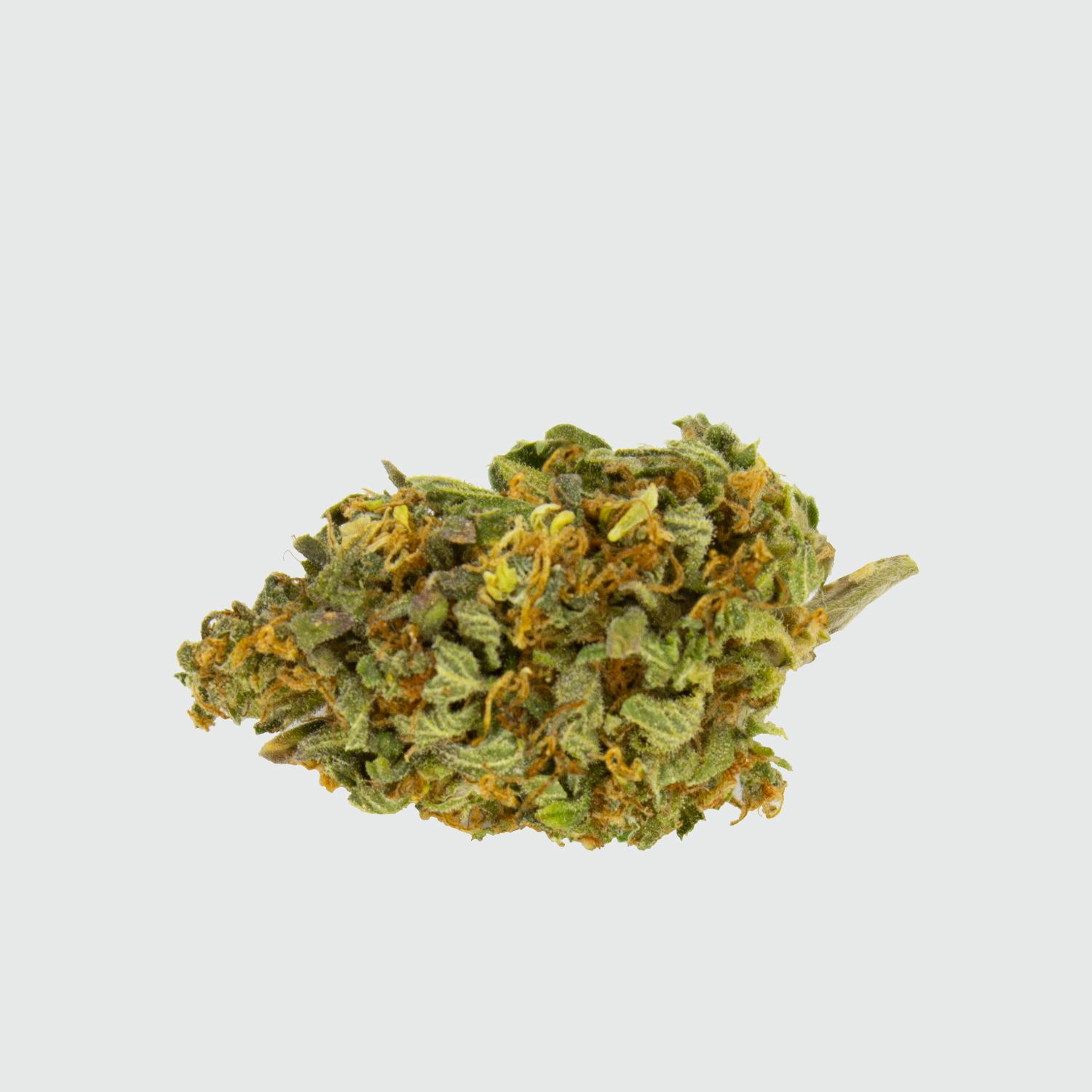 CBWEED-Green-House-Seed-Holy-Punch-CBD