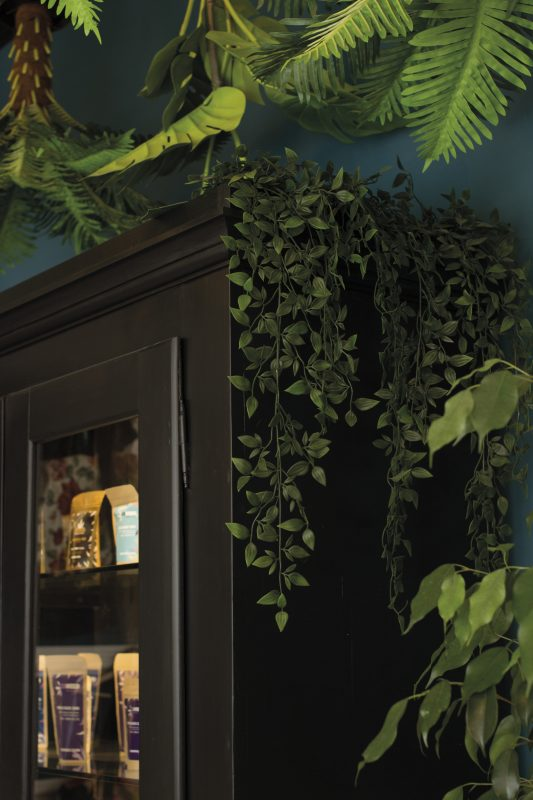 showroom-cbweed-low