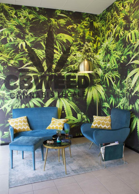 cbweed-showroom-design-low