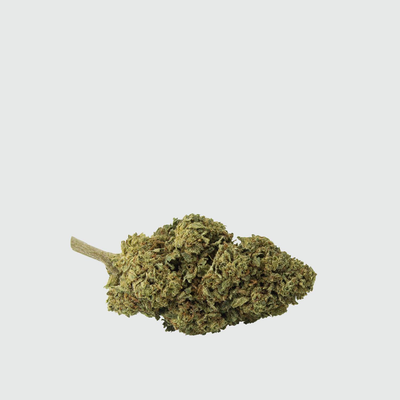 Cannabis-Light-Critical-Mass-CBD-5g-EU