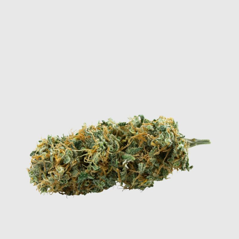 low_Green-House-Collab-super-silver-haze